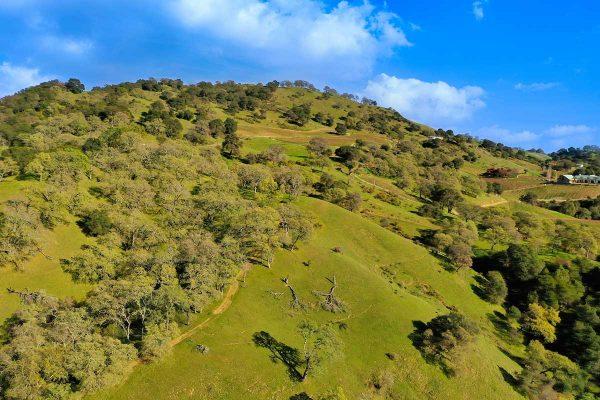 1080-Quail-Ridge-8